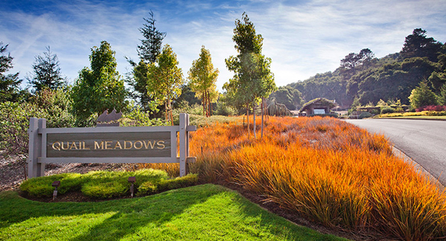 Quail Meadows Entrance